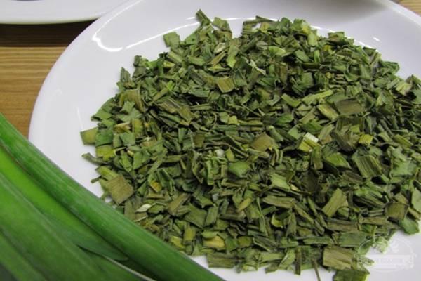 можно ли засушить зеленый лук на зиму
